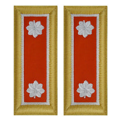 Army Dress Shoulder Strap: Lieutenant Colonel - nylon, female