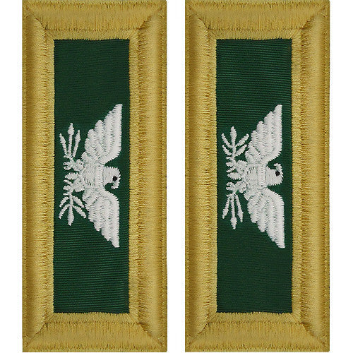 Army Shoulder Strap: Colonel Special Forces
