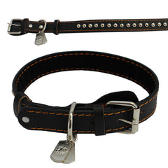 Pet Insignia - XL SPIKED LEATHER COLLAR WITH EGA TAG