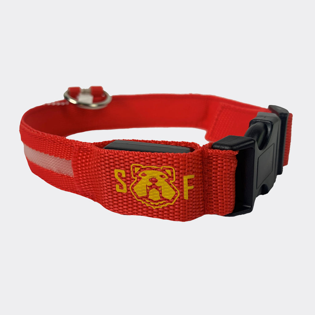 US Marine Corps Pet Collar: Semper Fido Red Led