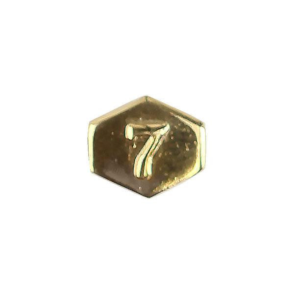 Army Identification Badge Attachment: Director 7 - gold mirror finish