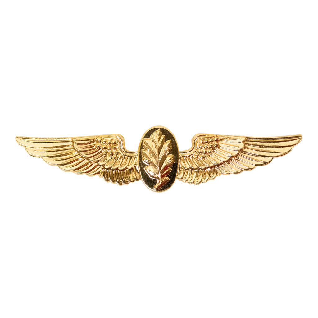 Navy Badge: Aviation Physiologist - regulation size
