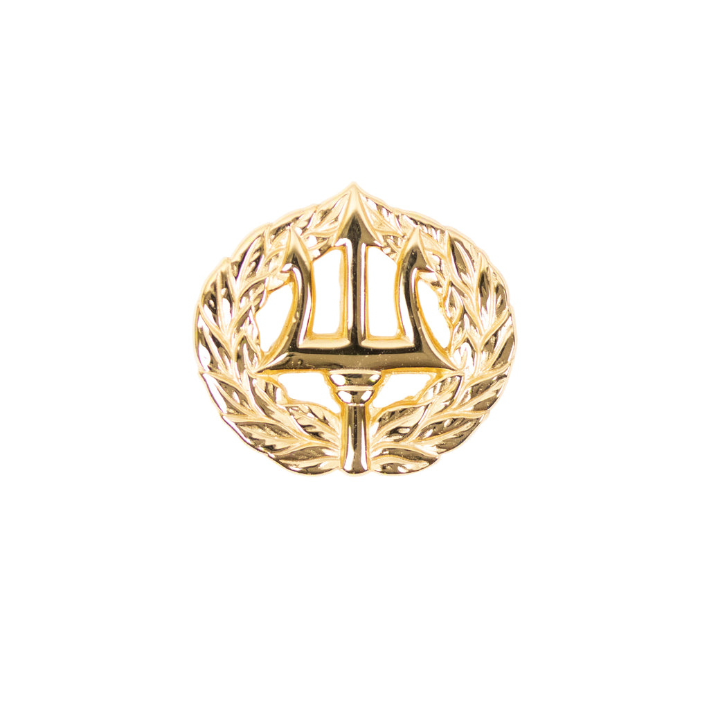Navy Badge: Command Ashore - miniature, mirror finish