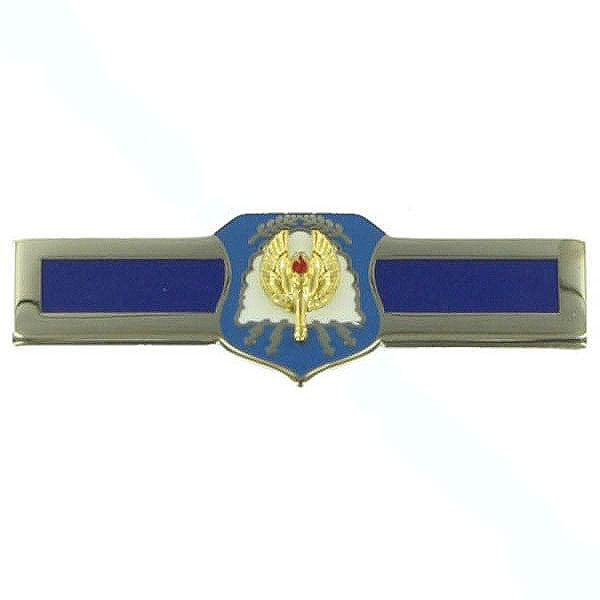 Air Force ROTC Badge: Distinguished Cadet