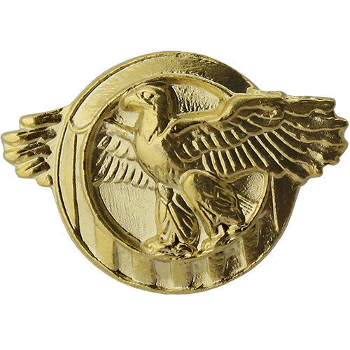 Lapel Pin: WWII Honorable Discharge (Ruptured Duck) - satin gold