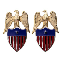 Army Aides Insignia: Aide to Brigadier General