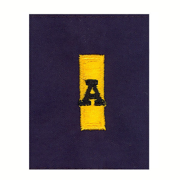 Coast Guard Auxiliary Jacket Tab: FCO/DCO