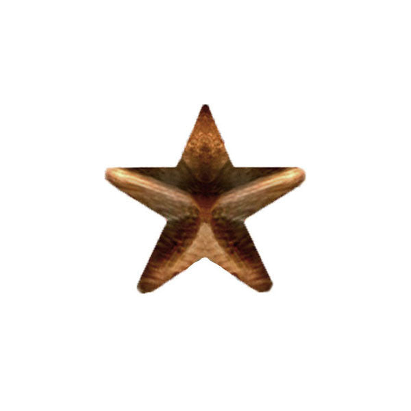 Ribbon Attachments: 5/16 inch Bronze Star