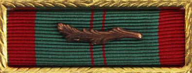 Ribbon Unit: Vietnam Civil Action First Class with palm and small frame.  Palm attachment included but not mounted.