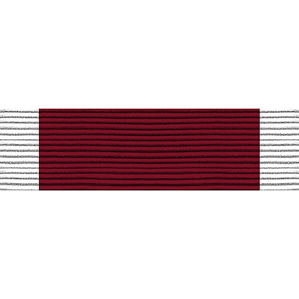 Ribbon Unit #7119: Young Marine's Lifesaving Third Degree