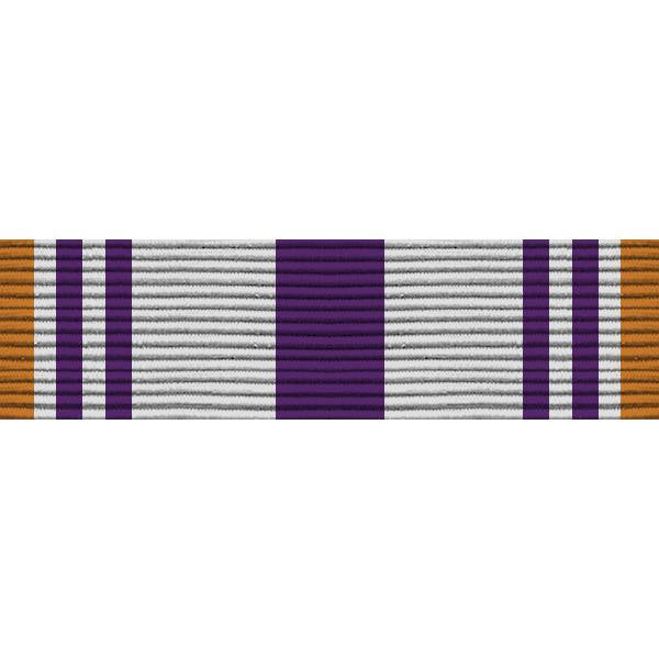 Army ROTC Ribbon Unit: N-4-5: AJROTC Public Achievement