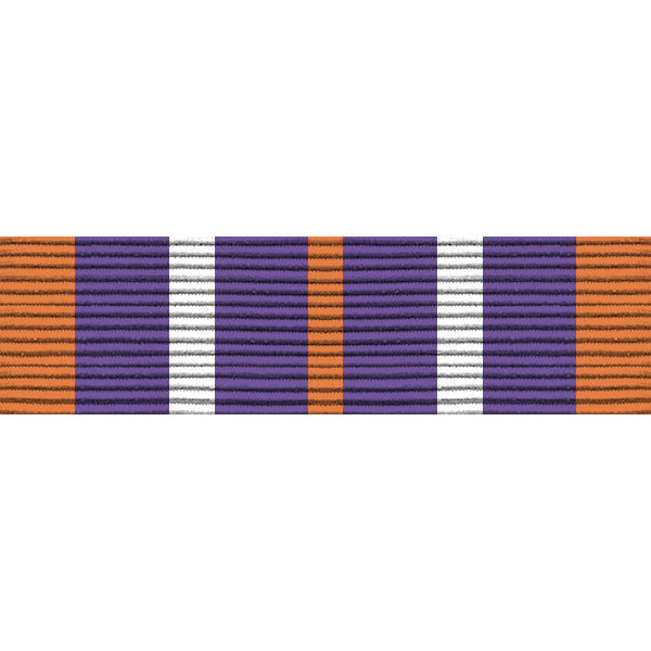 Army ROTC Ribbon Unit: N-4-6: AJROTC Service Learning