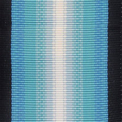 Ribbon Yardage Antarctica Service Ribbon