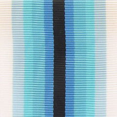 Coast Guard Arctic Service Ribbon Yardage