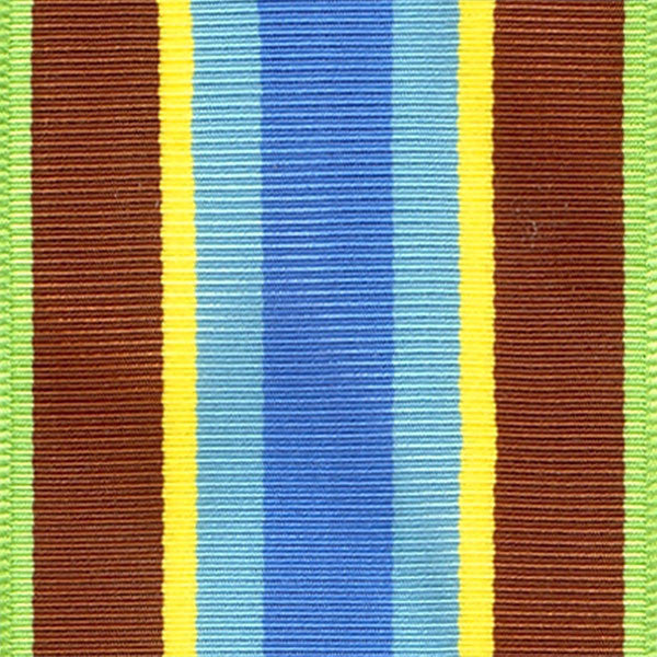 Coast Guard Letter Of Commendation Ribbon Yardage