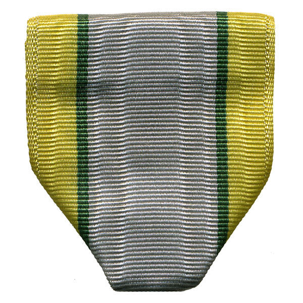 Army ROTC Ribbon Drape: N-1-5: AJROTC Student Government