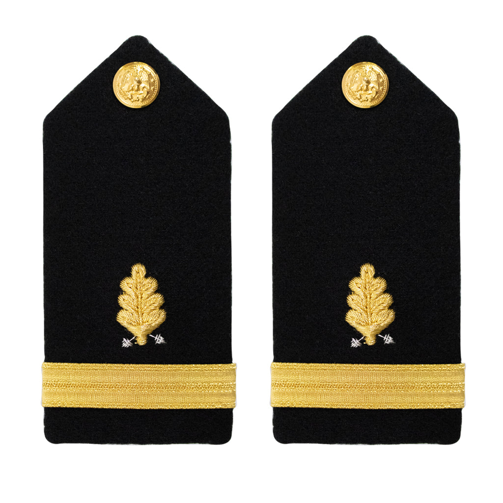 Navy Shoulder Board: Ensign Dental Corps - female