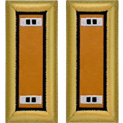 Army Shoulder Strap: Warrant Officer 2 Electronic Warfare