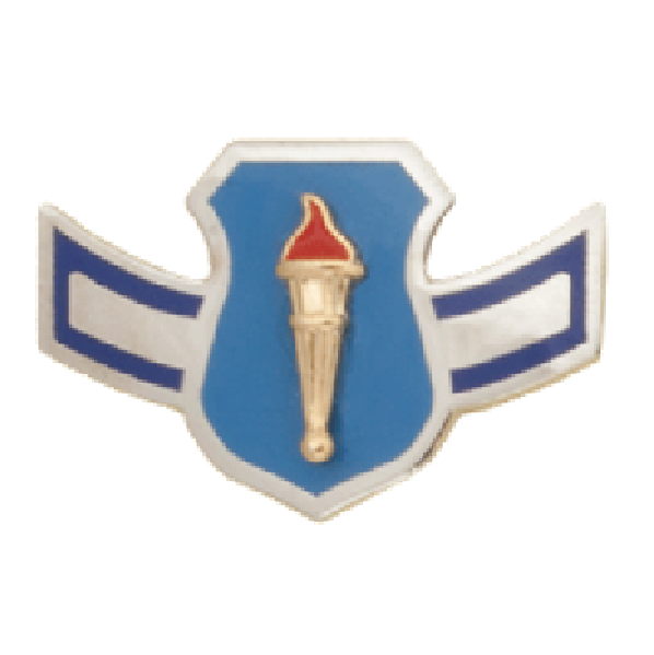 Air Force JROTC Chevron: Airman