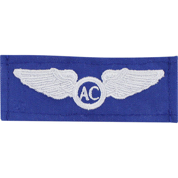 Civil Air Patrol Insignia: Basic Aircrew wings cloth