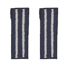 Civil Air Patrol Bullion Applique - Tech Flight Officer