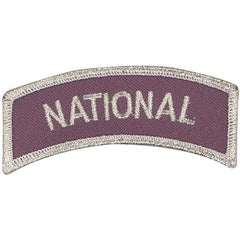 Civil Air Patrol Arch Patch: National - grey