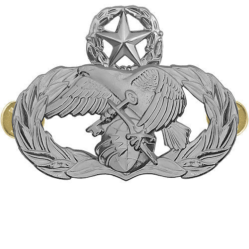 Air Force Badge: Logistics Readiness: Master - midsize
