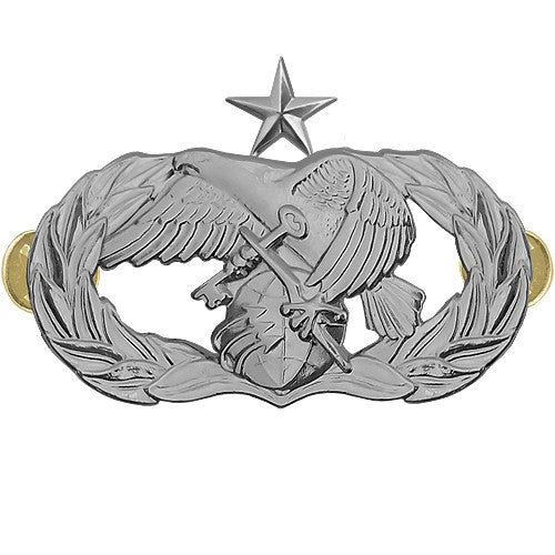 Air Force Badge: Logistics Readiness: Senior - midsize