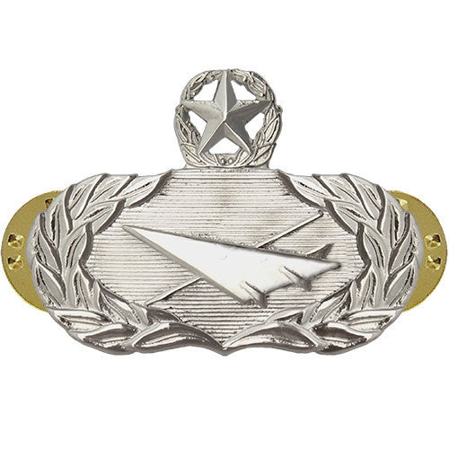Air Force Badge: Historian: Master - midsize