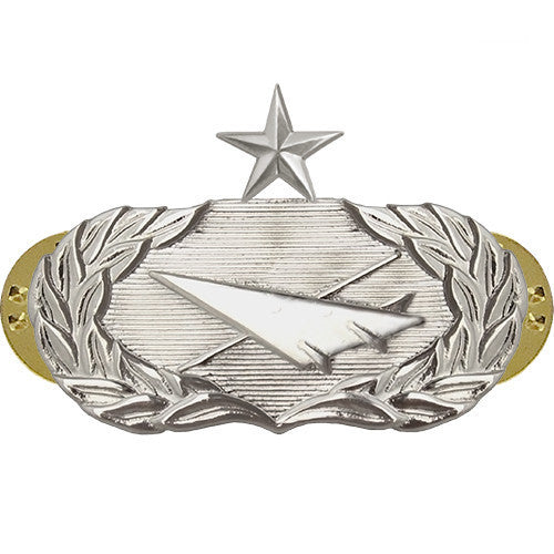 Air Force Badge: Historian: Senior - midsize