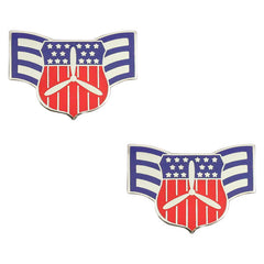 Civil Air Patrol Chevron: Cadet Senior Airman