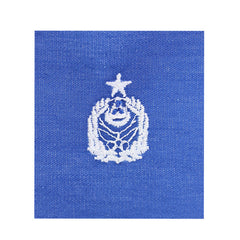 Civil Air Patrol Cloth Badge: Group Commander