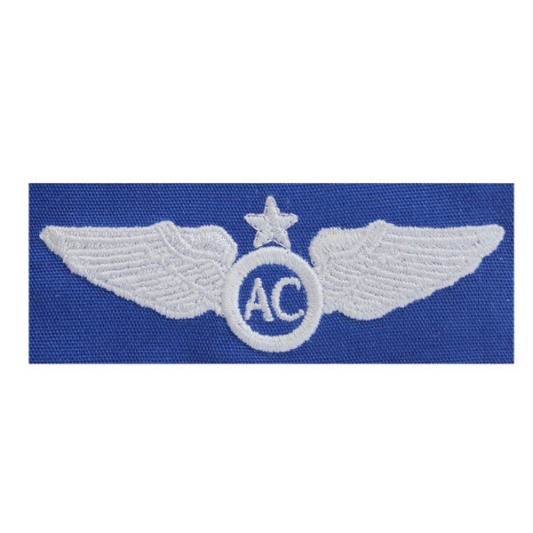 Civil Air Patrol Insignia: Senior Aircrew wings cloth