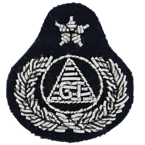 Civil Air Patrol: Badge Ground Team Senior, bullion