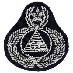 Civil Air Patrol: Badge Ground Team Master, bullion