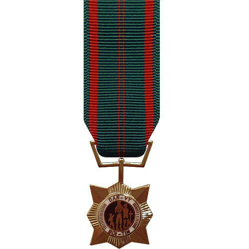 Miniature Medal: Vietnam Civil Action First Class