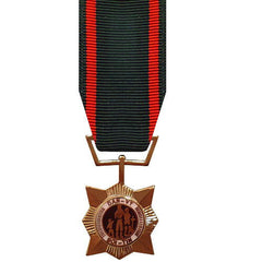 Miniature Medal: Vietnam Civil Action Second Class