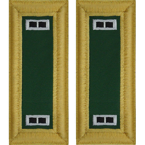Army Shoulder Strap: Warrant Officer 2: Special Forces