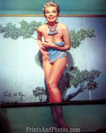 LILI ST CYR Beautiful 50s Pinup 0284