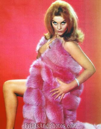 Entertainer ANN MARGRET Pinup  0776