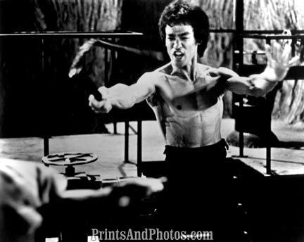 Martial Arts Legend BRUCE LEE  0869