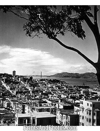 San Francisco showing Golden Gate  1757