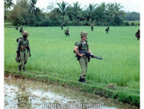 Vietnam Op Masher Ten Soldiers  2468