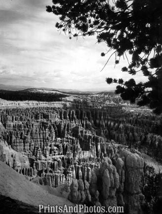 BRYCE CANYON Natl Park  3042