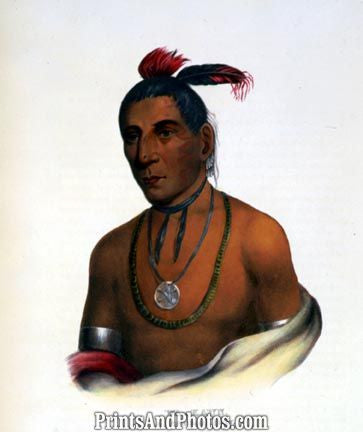 Native Indian Wa-Kawn Winnebago Chief 3748