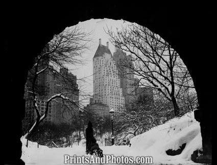 New York Central Park Winter 1939  3982