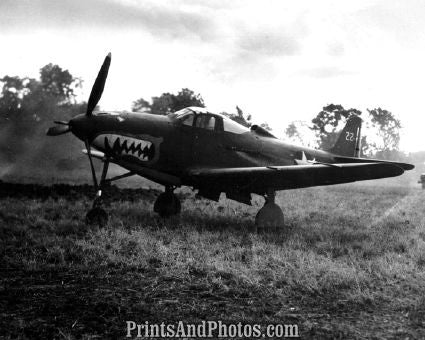 US Marines Flying Shark P-39 Plane  4114