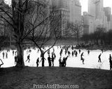 NY Central Park Ice Skating  4175