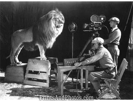 MGM Lion Logo Being Filmed  4239