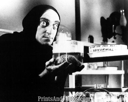Young Frankenstein Marty Feldman  4346